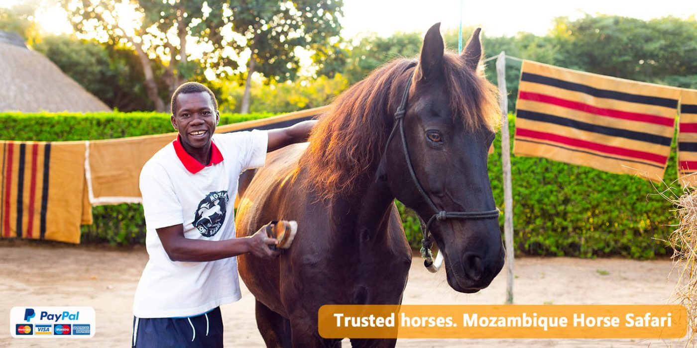 Mozambique Horse Safari