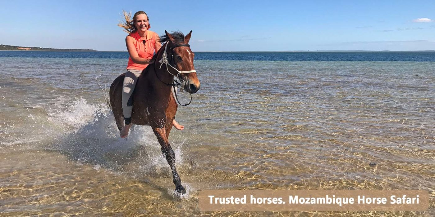 South African Horse Riding Holiday