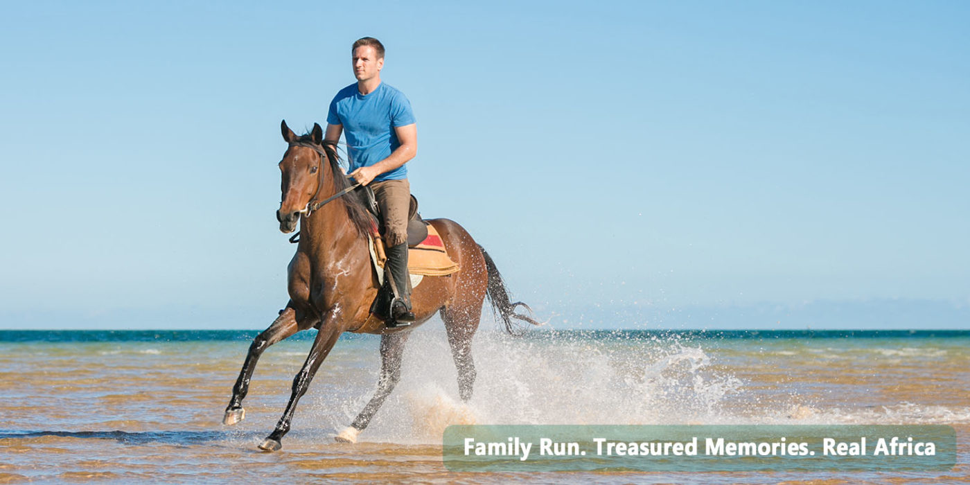 Riding Horses in Africa with Mozambique Horse Safari